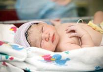 foto articolo liti e bebè