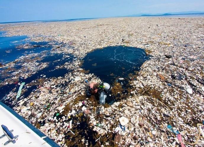 Plastica nell'ambiente, di chi è la colpa?